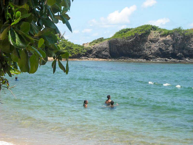 Forest Point Destination Trinidad And Tobago Tours