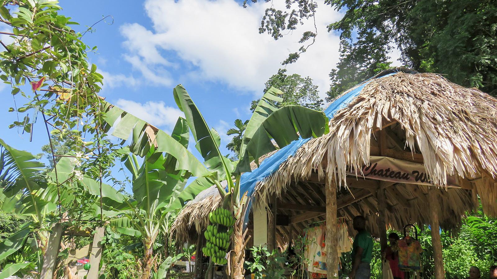 San Antonio Green Market Destination Trinidad And Tobago