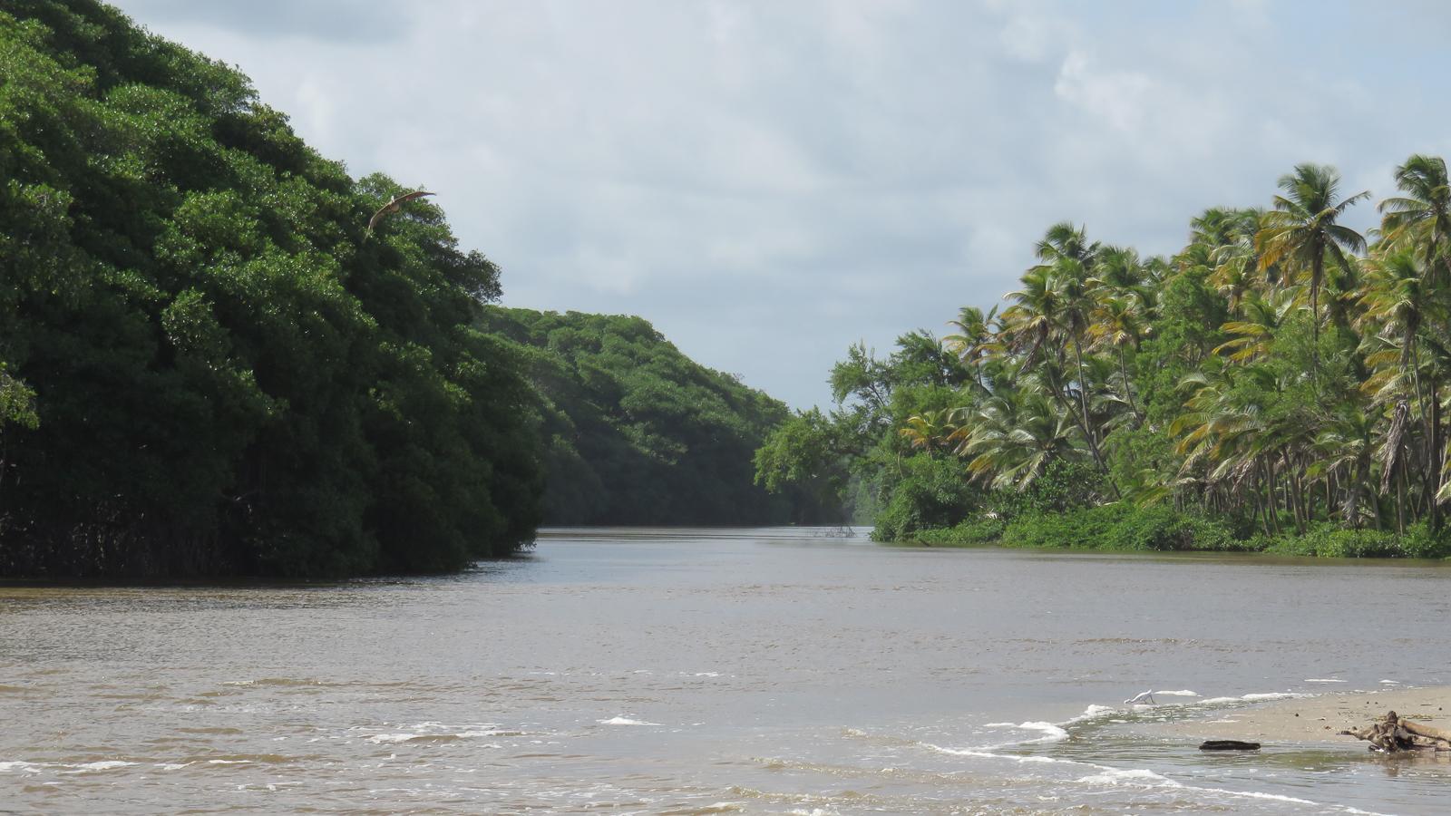 Manzanilla Beach Destination Trinidad And Tobago Tours