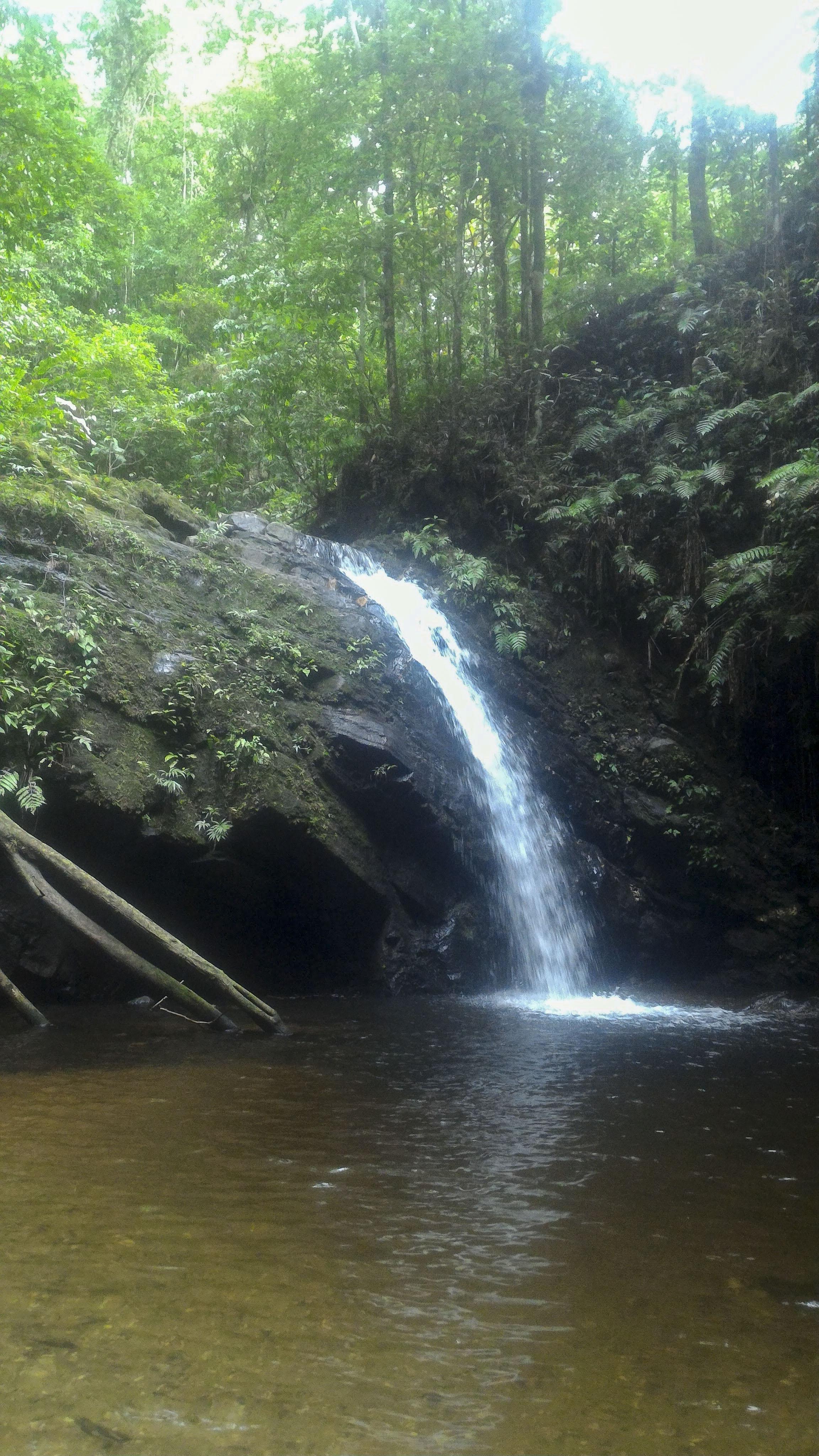 Homad & Lacatang Falls, Grand Riviere