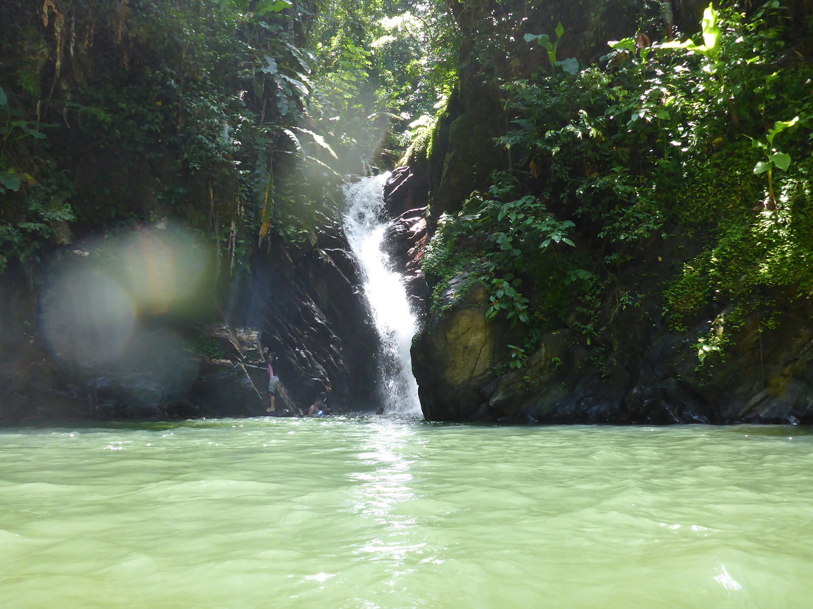 Seven of the Best Waterfalls in Trinidad and Tobago