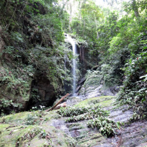 Angel Falls, North Coast, Trinidad