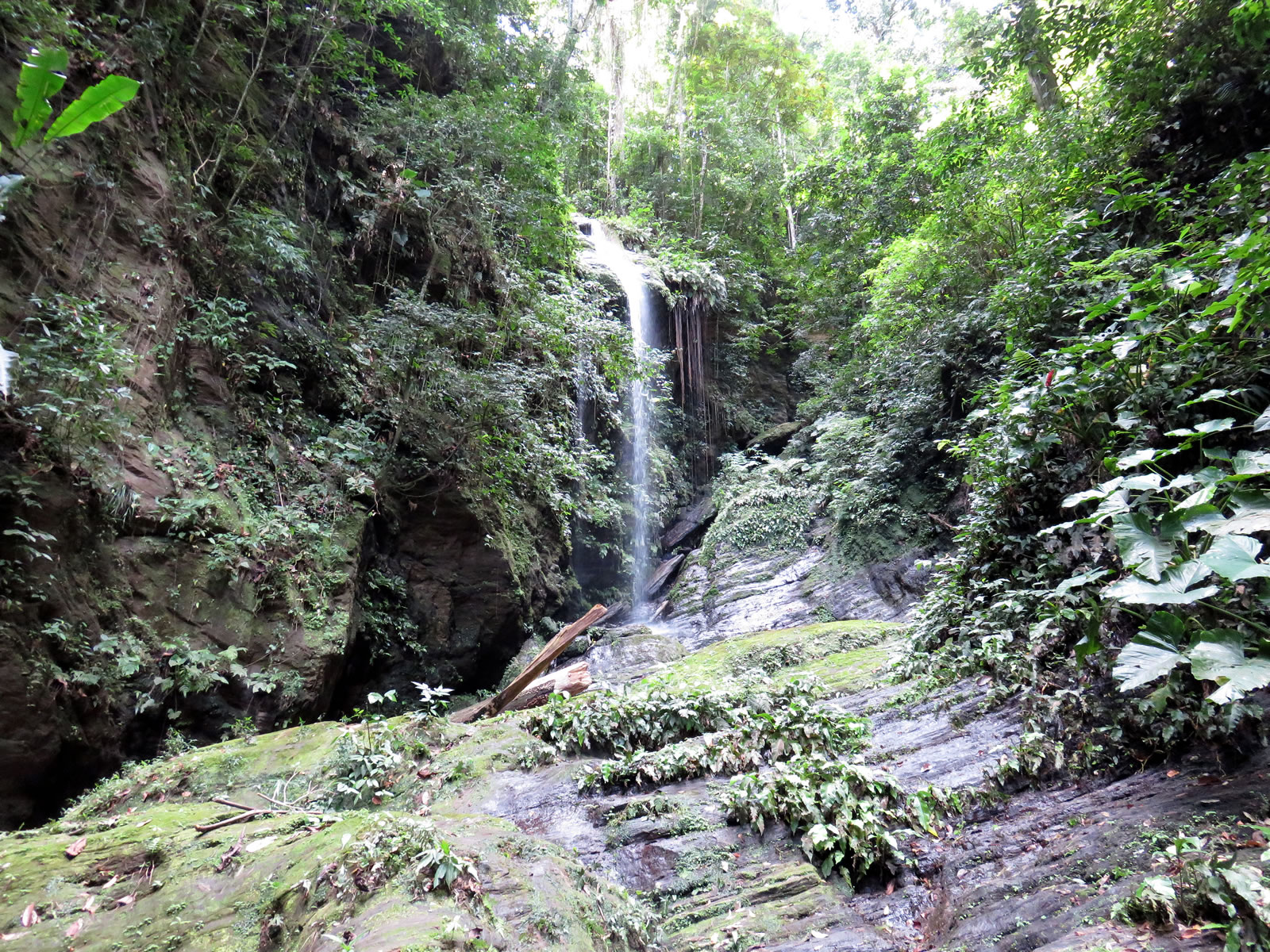 Angel Falls, North Coast, Trinidad