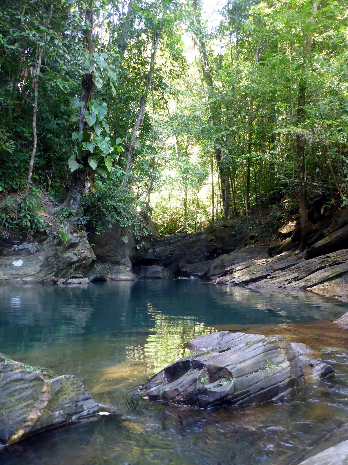 Avocat Waterfall Destination Trinidad And Tobago Tours