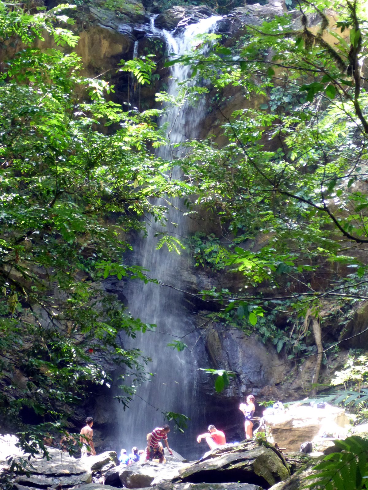 Avocat Waterfall Destination Trinidad And Tobago Tours Holidays Vacations And Travel Guide