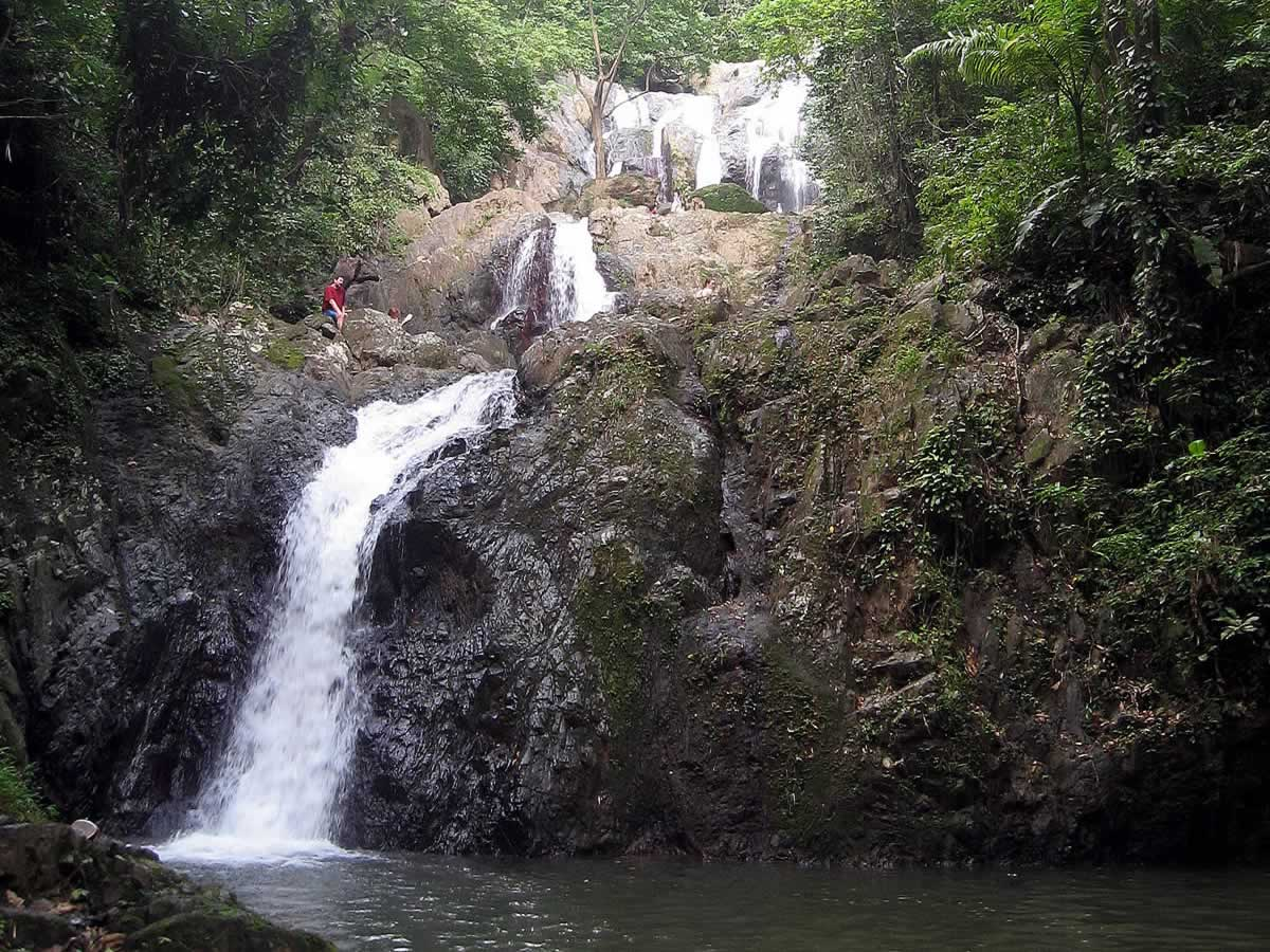 Argyle Waterfall Tobago Tour