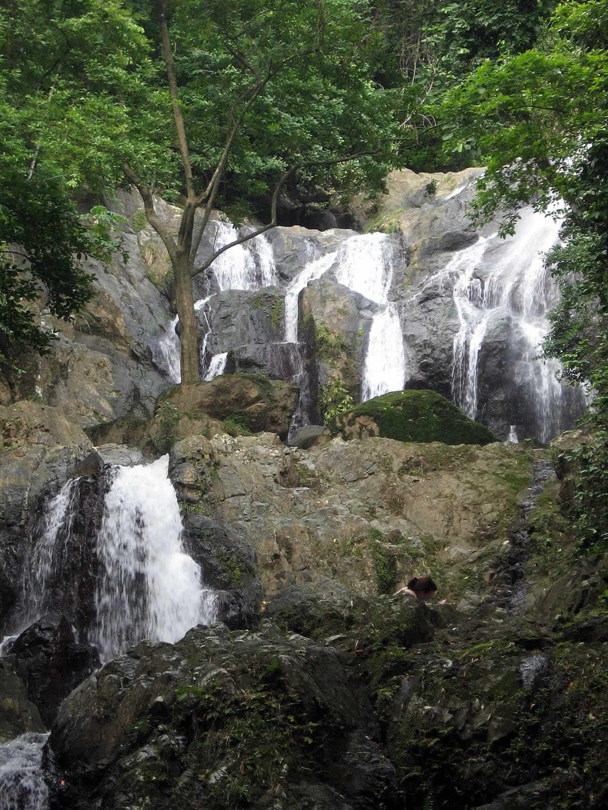 Argyle Waterfall Destination Trinidad And Tobago Tours