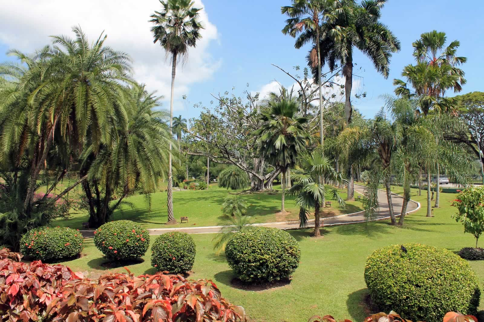 Botanic Gardens: Destination Trinidad And Tobago | Caribbean Holidays,  Vacations And Travel Guide