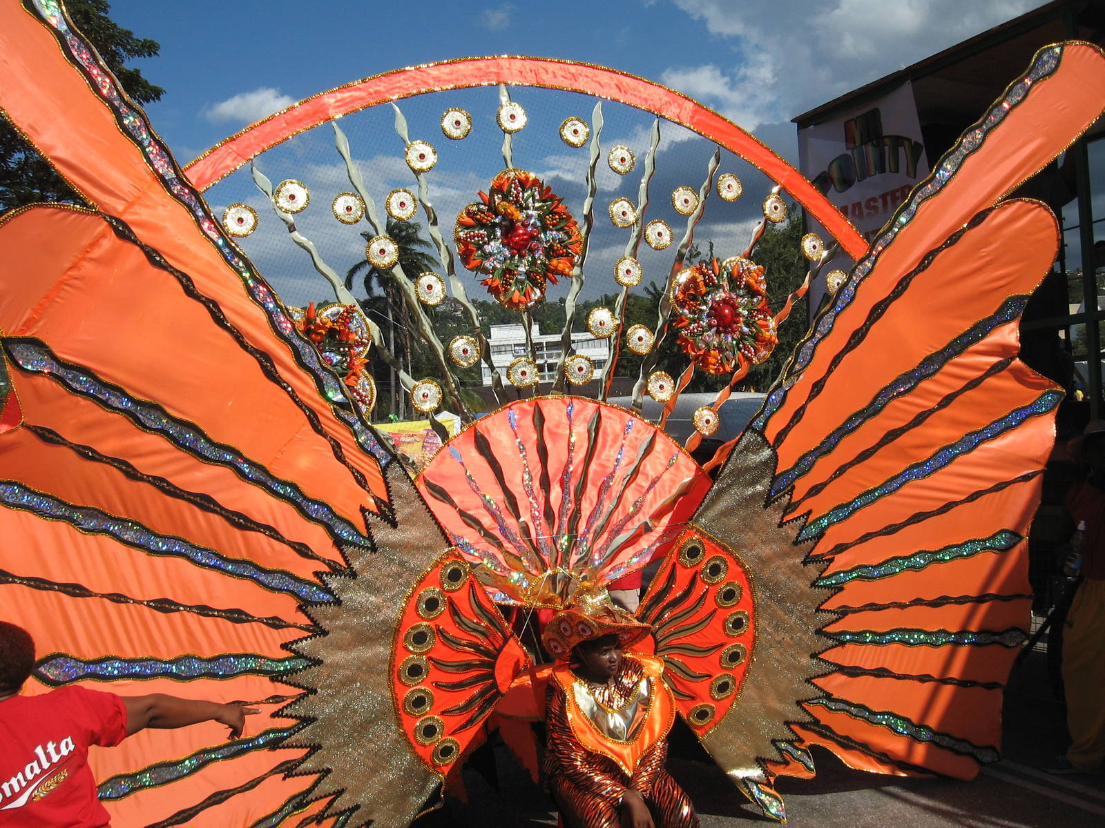 carnival destination trinidad and tobago tours holidays