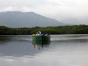 Caroni Swamp and Bird Sanctuary: Destination Trinidad and
