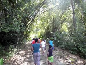 fs_covigne-river-trail-P1010025