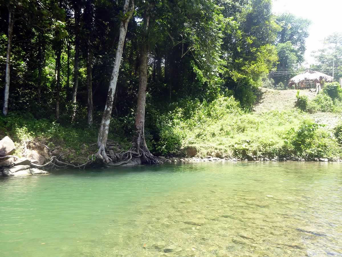 Shark River Destination Trinidad And Tobago Tours
