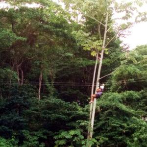 Ziplining in Tucker Valley, Chaguaramas, Trinidad