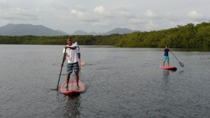 Stand Up Paddleboarding at Caroni Swamp and Bird Sanctuary, Trinidad